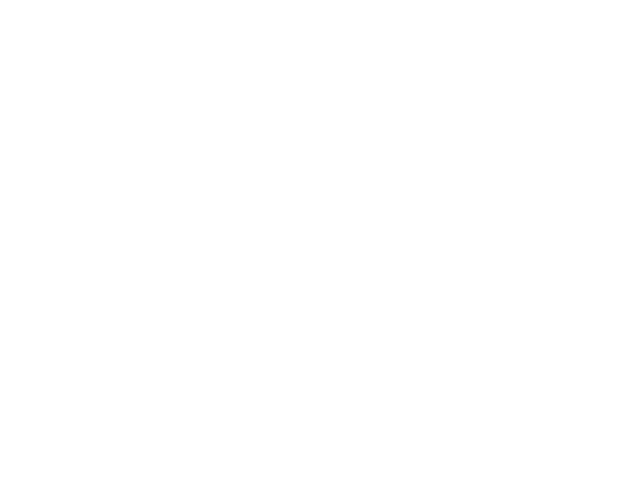 Charity Rallies